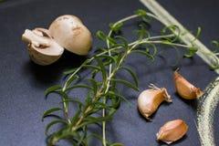 Funghi e rosmarini, aglio Fotografie Stock Libere da Diritti