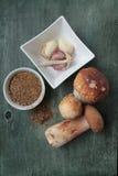 Funghi e spezie Immagini Stock