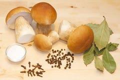 Funghi e spezie bianchi Immagini Stock Libere da Diritti