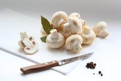 Funghi, foglia di alloro e pepe Fotografia Stock