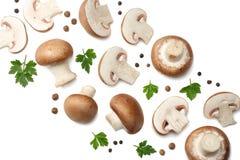 Funghi freschi del fungo prataiolo isolati su fondo bianco Vista superiore immagine stock libera da diritti
