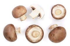 Funghi freschi del fungo prataiolo su fondo bianco Vista superiore Disposizione piana Fotografia Stock Libera da Diritti