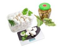 Funghi freschi e marinati, ramo di alloro, scala della cucina Fotografia Stock Libera da Diritti