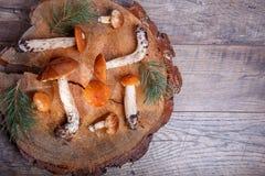 Funghi freschi selvaggi su una tavola di legno rustica Bolete arancione della betulla Copyspace Priorità bassa di autunno Fotografia Stock