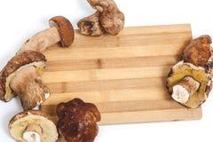 Funghi freschi sistemati sul tagliere Fotografia Stock