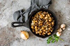 Funghi fritti Fotografia Stock Libera da Diritti