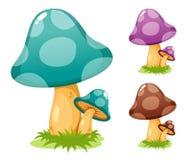 Funghi impostati Fotografia Stock Libera da Diritti