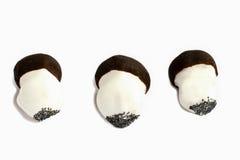 Funghi isolati dei biscotti Fotografia Stock Libera da Diritti