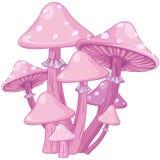 Funghi magici Immagini Stock