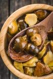 Funghi marinati Boletus marinato Fotografia Stock