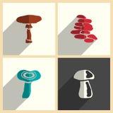 Funghi messi delle icone piane con ombra Illustrazione di vettore Illustrazione di Stock