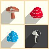 Funghi messi delle icone piane con ombra Illustrazione di vettore Illustrazione Vettoriale