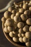 Funghi organici crudi del faggio di Brown Immagine Stock Libera da Diritti