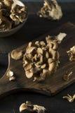 Funghi organici crudi di Maitake Fotografia Stock Libera da Diritti