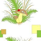 Funghi piacevoli della foresta sveglia nell'erba e nella coccinella della felce Illustrazione di vettore illustrazione vettoriale
