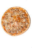 Funghi pizza from above on the white background Stock Photos