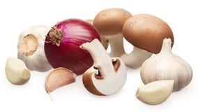 Funghi reali del fungo prataiolo, cipolla rossa ed aglio con i chiodi di garofano Fotografie Stock Libere da Diritti