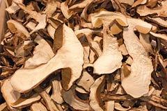 Funghi secchi di porcini immagini stock libere da diritti