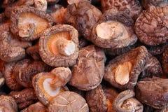 Funghi secchi, fine cinese del mercato in su Immagini Stock