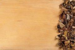 Funghi secchi sul bordo Immagini Stock