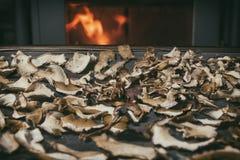 Funghi secchi sulla tavola sul camino a fondo con fuoco Stoccaggio dei funghi secchi I funghi si avvicinano al fuoco nell'orario  Immagine Stock Libera da Diritti
