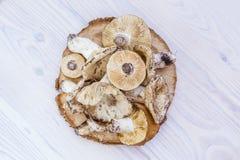 Funghi selvaggi della foresta di autunno su un fondo bianco di legno Funghi sul ceppo di legno immagini stock libere da diritti