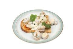 Funghi su pane tostato fotografia stock