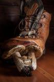 Funghi su una scheda di taglio di legno Fotografia Stock