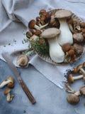 Funghi su uno scrittorio tagliente con il coltello fotografie stock