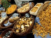 Funghi sul mercato Immagine Stock Libera da Diritti
