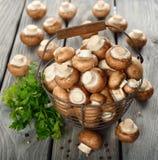 Funghi in un canestro Immagini Stock Libere da Diritti