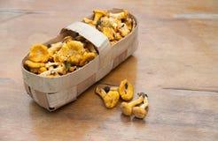 Funghi in un cestino immagini stock