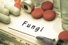 Fungi Stock Photo