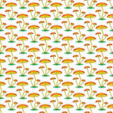 Fungi pattern Stock Photo
