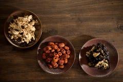 Fungo cinese dello zenzero della giuggiola dell'erba asciutta Immagini Stock