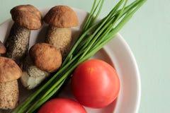 Fungo, cipolla verde e pomodori Fotografia Stock Libera da Diritti
