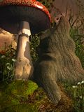 Fungo da un vecchio albero Fotografia Stock