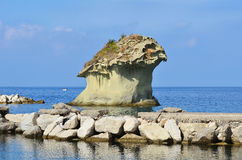 Fungo de l'IL de roche - Lacco Ameno Images stock