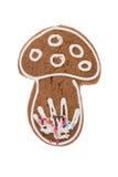 Fungo del pan di zenzero di Natale isolato su un fondo bianco Fotografia Stock