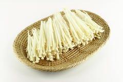 Fungo di Enoki, fungo dorato dell'ago Fotografie Stock Libere da Diritti