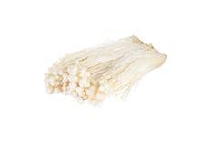 Fungo di Enoki, fungo dorato dell'ago isolato sul backgro bianco Fotografie Stock Libere da Diritti
