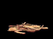 Fungo di Lingzhi Fotografia Stock