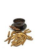 Fungo di Lingzhi Immagini Stock Libere da Diritti