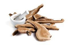 Fungo di Lingzhi, medicina tradizionale cinese, Ganoderma Lucidu immagini stock libere da diritti