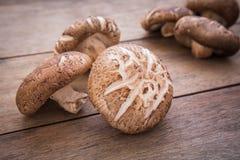Fungo di shiitake sulla tavola di legno Fotografia Stock Libera da Diritti