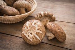 Fungo di shiitake sulla tavola di legno Immagine Stock