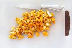 Fungo dorato affettato del galletto Fotografie Stock