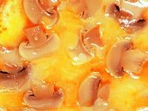 Fungo e formaggio Fotografie Stock