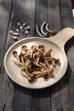 Fungo fritto di yanagi con la salsa dell'ostrica Fotografie Stock