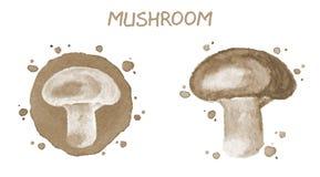 Fungo Illustrazione originale dell'acquerello Immagini Stock
